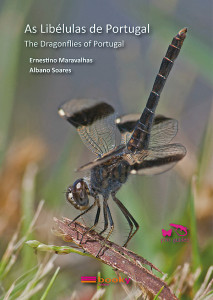 DragonfliesofPortugalx600